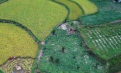 蒙山凌云获第二批国家生态文明建设示范市县称号