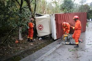 高清:貨車避讓占道小車 失控側翻撞上路邊護林