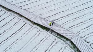 高清�D集:三江侗寨雪景美如��