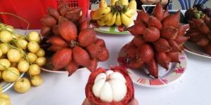 """全球顶级水果""""国际水果集市""""开Party!水果中的""""王者""""、""""劳斯莱斯""""都来了……"""