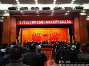开拓创新 勇于担当 政协鱼峰区九届四次会议召开