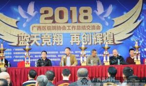 发展信鸽运动 广西信鸽协会工作总结交流大会举行
