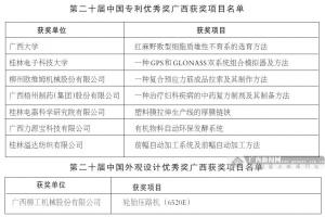 广西8项专利获中国专利优秀奖 获奖项目创历史新高
