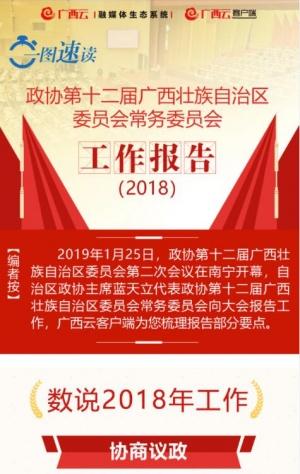 政协第十二届广西壮族自治区委员会常务委员会工作报告(2018)