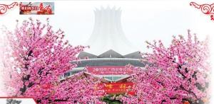 南宁街头春节氛围浓:重拾年味 感受年俗(组图)