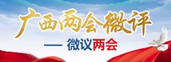 2019广西两会微评——微议两会