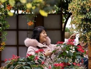 北京:赏花卉 过春节