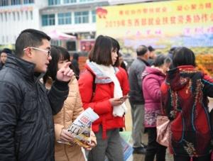 【高清组图】罗城:粤桂扶贫协作招聘会促就业