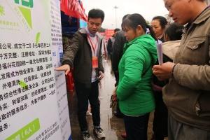 河池环江举行招聘会 5000多岗位助群众脱贫