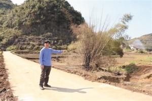 上林县:野生葡萄产业种植 助力贫困户脱贫摘帽
