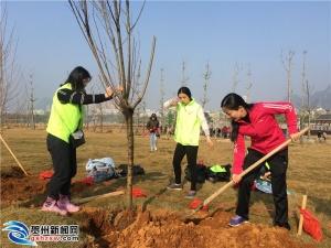 贺州开展2019年青年志愿者植树造林活动