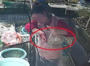 南宁一海鲜摊主用死虾坑骗消费者 监控拍下全过程