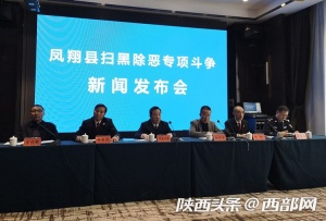 凤翔打掉涉恶类犯罪集团4个  抓获犯罪嫌疑人72人