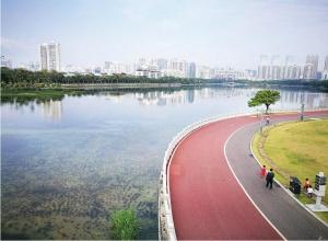 <b>南宁海绵城市建设环境大变:清水绿岸鱼翔浅底</b>