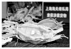 上海海关查获加湾石首鱼鱼鳔 估值千万