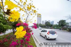 钦州:完善城市路网惠民生(图)