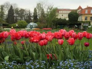 花团锦簇的萨格勒布