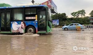 高清组图:玉林容县遭遇强对流 路面积水大树刮倒