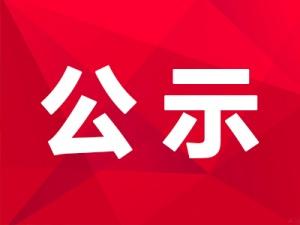 关于报送参评第二十九届中国新闻奖作品的公示