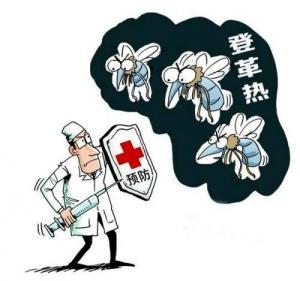广西检出今年首例输入性登革热病例 做好防蚊措施