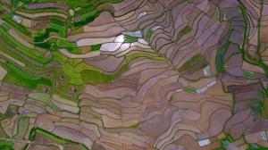 高清:融安田园色彩斑斓春色秀美如画