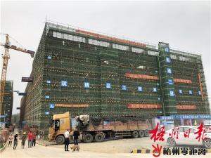 粤桂合作特别试验区提升服务夯实发展基础