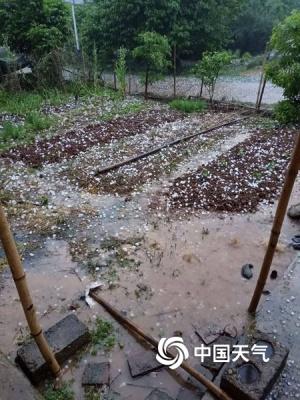 恭城遭受冰雹大风袭击 各乡镇受灾严重