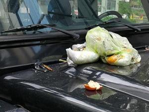5月1日焦�c�D:路虎停通道 被扔垃圾包
