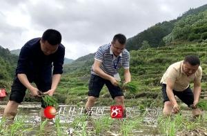 龍勝縣偉江鄉:在春天的田野上播撒下希望的種子