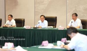 """广西:下功夫抓好一批""""双百双新""""重大产业工程"""