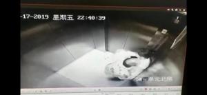 江苏宿迁一女业主电梯内遭男子猥亵 嫌疑人被抓获