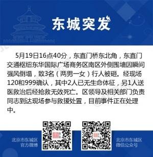 大风袭扰北京致局地树倒墙塌 已造成4人死亡
