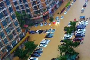 大雨夜袭靖西城区成海 车辆被泡学校???组图)