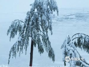 5月底还能积雪淹没脚踝 甘肃永靖的这场雪厉害了!