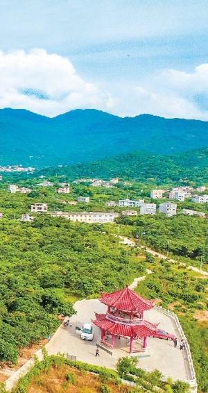 浦北实现村级集体经济大发展大跨越