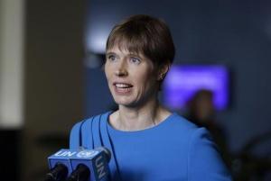 爱沙尼亚等5国当选联合国安理会非常任理事国