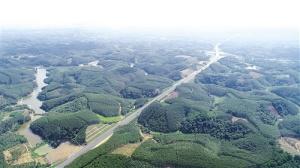 貴隆高速即將通車 賓陽武鳴隆安之間將添便捷通道