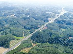 7月1日焦点图:广西又有一条高速路即将