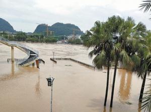 7月9日焦�c�D:�o急!漓江超警戒水位 排筏全�封航