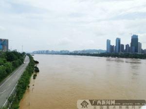 柳州洪峰過境 百姓生活如常街道秩序井然(圖)