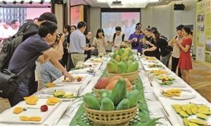百色芒果及项目招商专场推介会在深圳举行