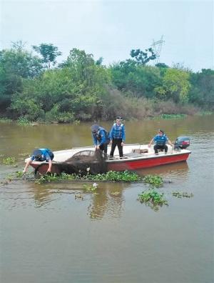 南宁:水位回落后修复景观 还邕江沿岸公园美景