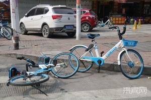 """共享單車亂象多 隨處都是""""停放點"""""""