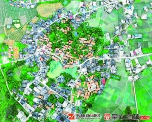 塘表村:乡村振兴让村子越来越美