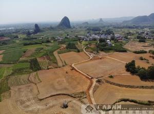柳北区石碑坪镇古城村以产业促村民增收 成绩喜人