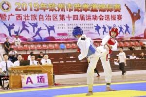 2019年钦州市跆拳道锦标赛开幕(图)