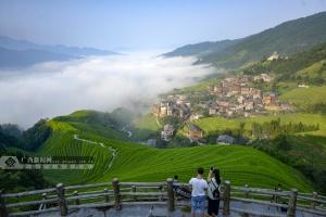 高清:广西龙胜龙脊梯田绿波荡漾 现壮美云海景观