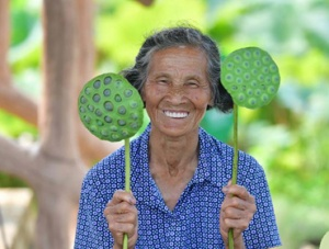 广西鹿寨:荷莲经济助脱贫