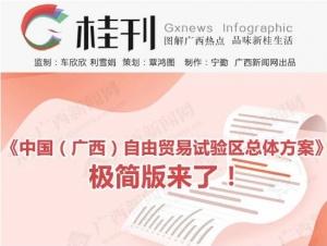 《中國(廣西)自由貿易試驗區總體方案》極簡版來了!