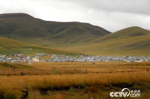 """【脱贫攻坚地方行】甘肃甘南波海村:从游牧到定居""""搬""""来的新生活"""